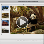 Image Swapper - HTML Image Viewer